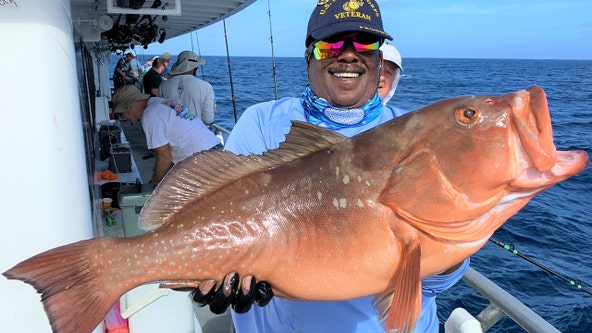 Good Catch: You can get some great action with snapper species