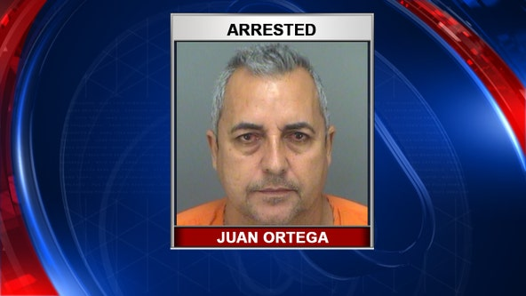 Deputies: Man arrested for rooster fighting in Pinellas County