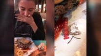 Hooters investigates after metal wire in hamburger sends diner to the hospital
