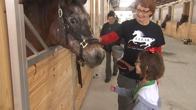 Young girl with huge heart raises $1,000 for horse rescue