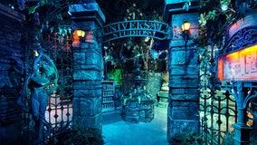 Mardi Gras-themed tribute store opens in Universal Studios Florida for seasonal carnival celebration
