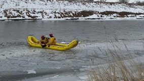 Dog chasing geese rescued from icy river in South Dakota