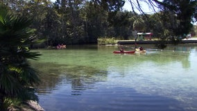 Hernando to discuss options for balancing tourism, conservation along Weeki Wachee River