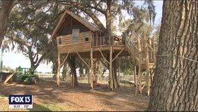 The new employee break room at Wish Farms is a treehouse