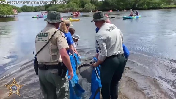 Manatees released back into wild