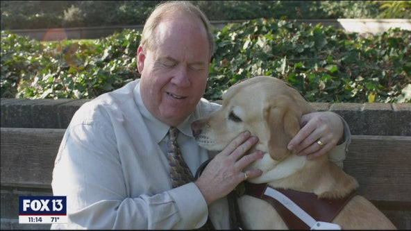 9/11 survivor's guide dog helped him escape North Tower's 78th floor