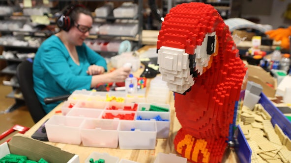 Dream job: How master builders create those giant LEGO models