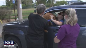 Veterinarians offer curbside appointments to limit COVID-19 exposure