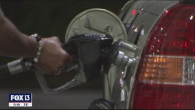 Stealing credit cards and stealing gas account for millions in yearly fraud