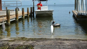 Boat ramps reopen in Manatee County