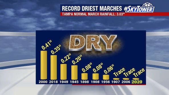 Tampa on track for driest March ever