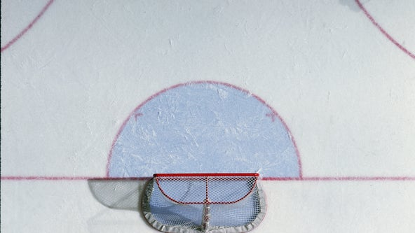 NHL, players announce plan to resume play August 1