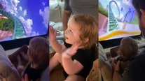 Toddler takes virtual ride on Busch Gardens roller coaster