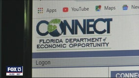 Report: Florida unemployment system designed to fail