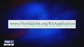 New unemployment application website shows promise
