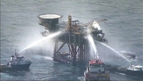 USF study: 'Substantial' amount of Deepwater Horizon oil still lives on in the environment
