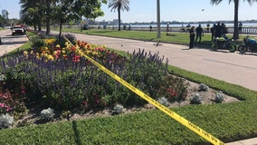 Tampa leaders hold virtual meeting on how to make Bayshore safer