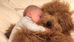 Adorable video of baby cuddling pet dog goes viral: 'People just want to see heartwarming stuff'
