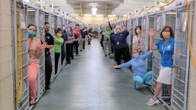 Florida animal shelter's kennels empty 'for the first time in history' after every dog adopted