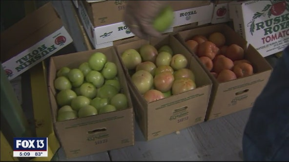 County helps connect Hillsborough farmers with consumers