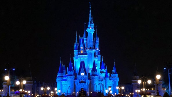 Disney lights up Cinderella's Castle in blue to honor healthcare workers