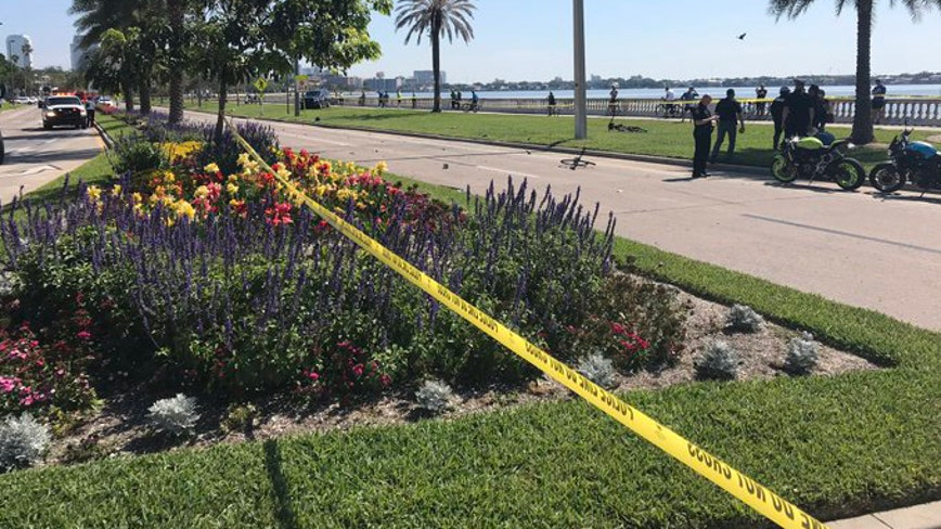 Motorcyclist and bicyclist collide on Bayshore Blvd.