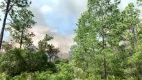 Brush fire closes Starkey Park in New Port Richey