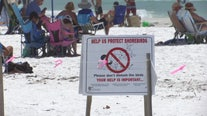 Wildlife experts remind beachgoers to give animals space as they head back to the shore
