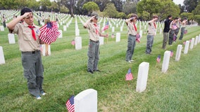 Boy Scouts banned from planting American flags on veterans' graves for Memorial Day due to coronavirus