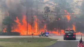 Alligator Alley reopens in southwest Florida as wildfire continues