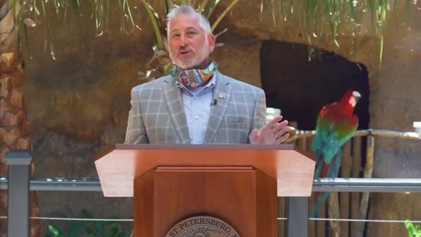 Parrot steals the spotlight during St. Pete mayor's daily COVID-19 update