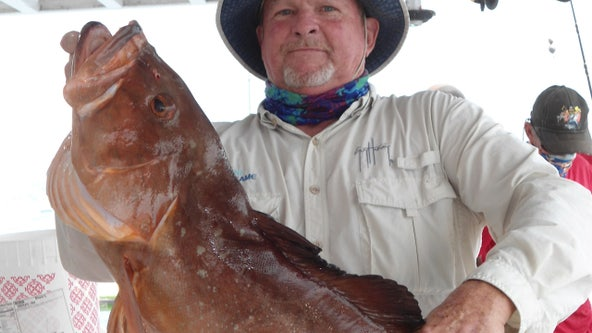 Red grouper action offshore is at its best right now