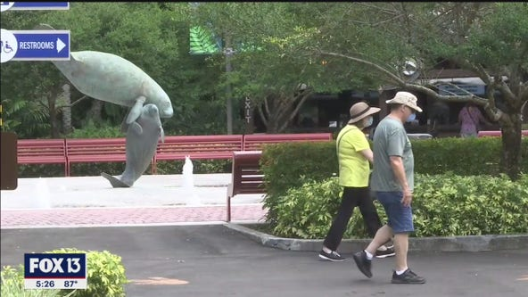 ZooTampa reopens to seniors Tuesday before full reopening Friday