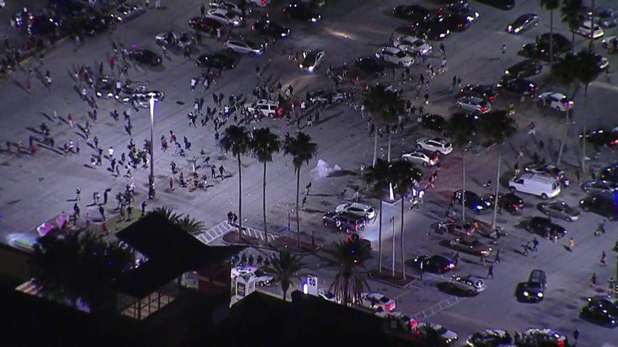 Hundreds of protesters loot stores near Busch Gardens, forcing Tampa streets to close