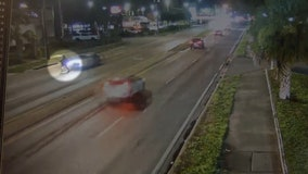 Driver sought in fatal hit-and-run on E. Bearss Ave.
