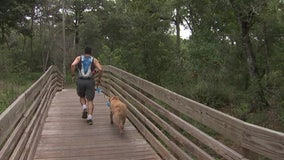 Get back to nature at a Hillsborough County park