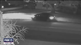 Police search for black car that mowed down 13 mailboxes in Clearwater