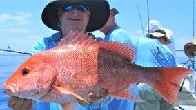 Fishing Report: June 12, 2020