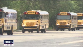 Congressman Charlie Crist reintroduces school bus seat belt requirement bill