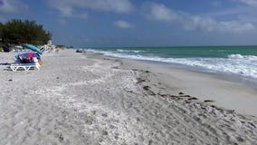 Longboat Key keeps beaches open, but closes parking lots