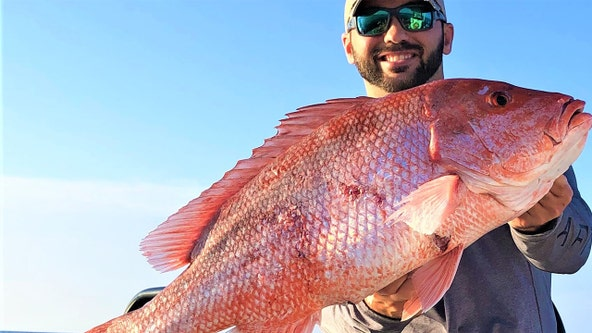 Red snapper biting well offshore