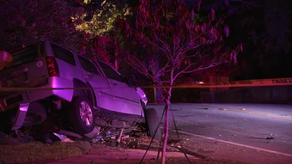 Police: Speed likely played role in Davis Islands crash that killed 1 overnight