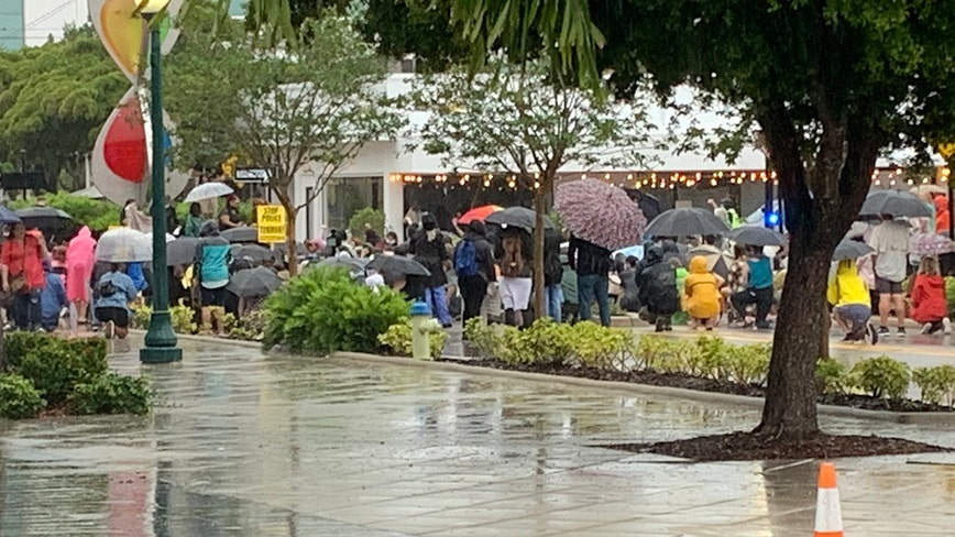 Umbrellas and fists raised for justice and peace in Sarasota