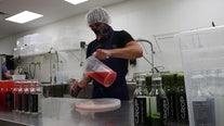 Leafy greens help power Crop Juice to expand across Sarasota