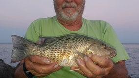 Fishing Report: July 31, 2020