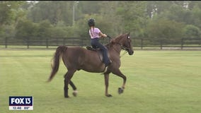 Summer camps available at Avalon Stables