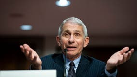 Fauci urges younger people to consider their 'societal responsibility' amid COVID-19 pandemic