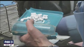 Manatee County reports 44% increase in opioid overdoses since last year