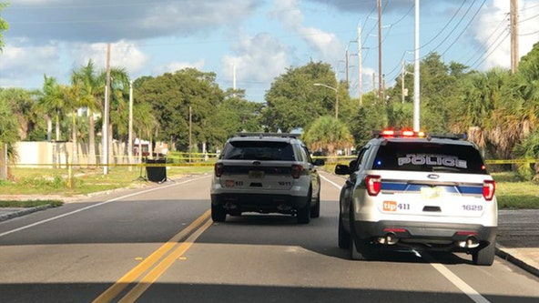 Human head found on side of St. Petersburg road, police say