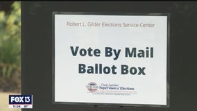 Experts agree with politicians: Voting by mail in Florida is safe and secure